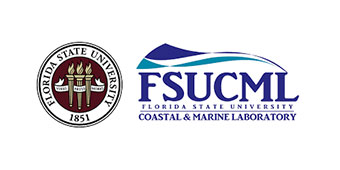FSURF Logo