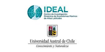 UACh-IDEAL Logo